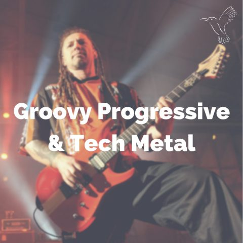 Groovy Progressive Tech Metal