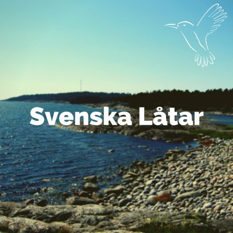 Svenska låtar