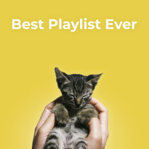 Best Playlist Ever 2019 – Feel it Still