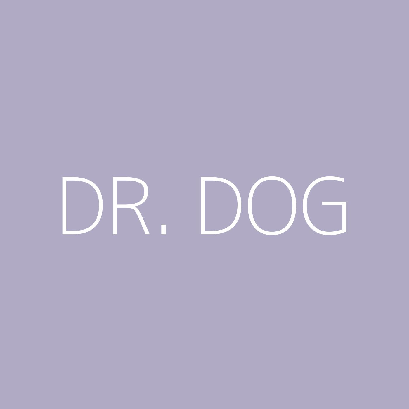 Dr. Dog Playlist Artwork