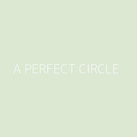 A Perfect Circle Playlist – Most Popular