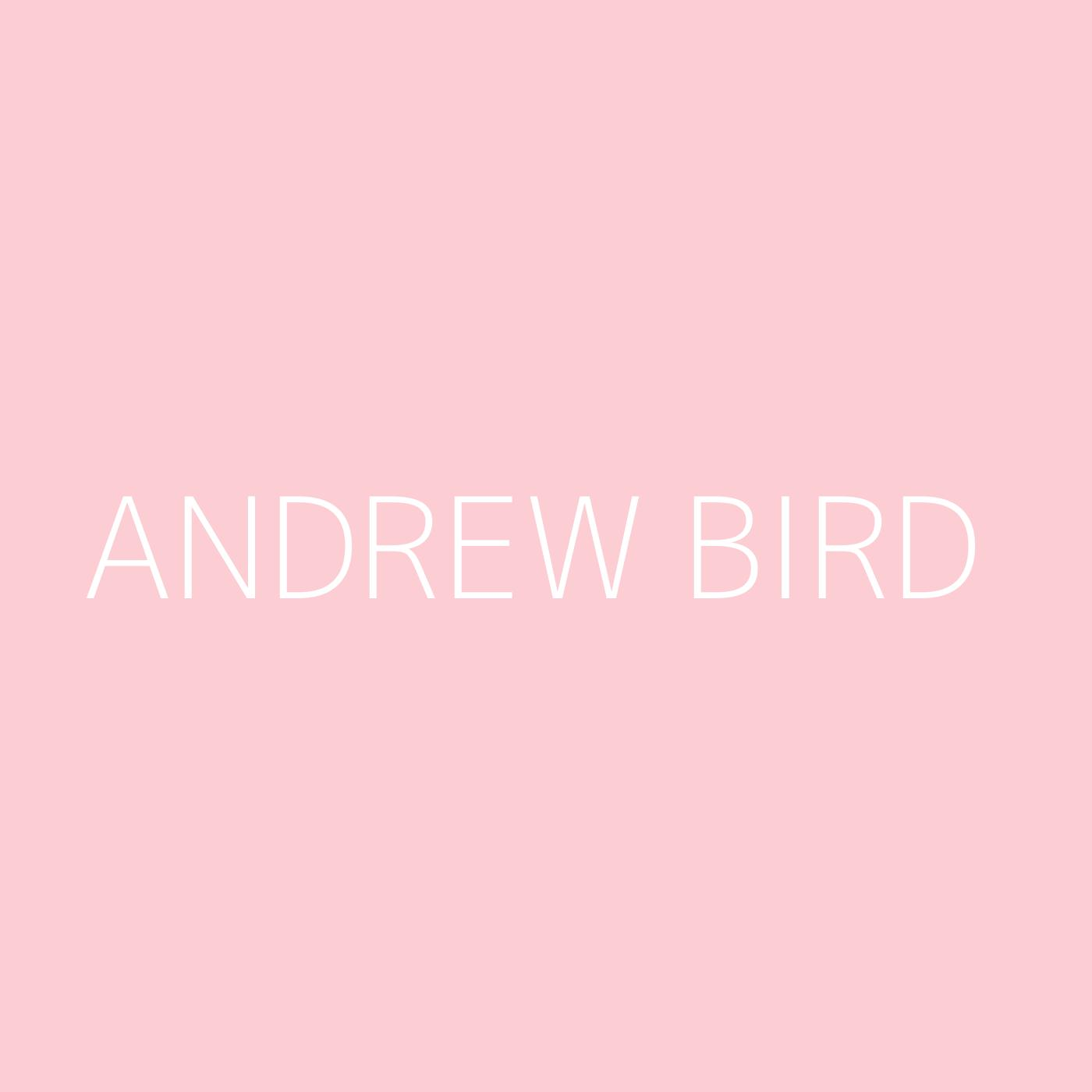 Andrew Bird Playlist Artwork