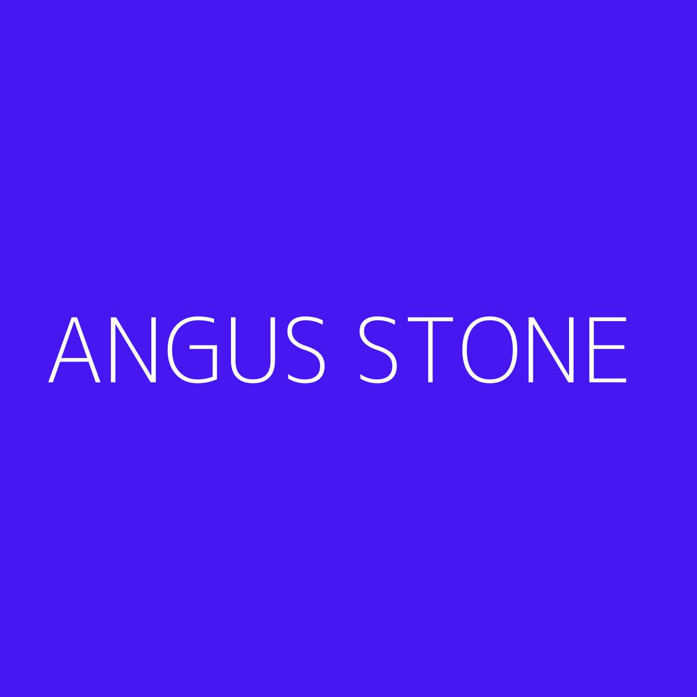Angus Stone Playlist Artwork