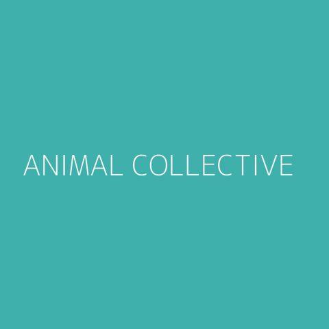 Animal Collective Playlist – Most Popular
