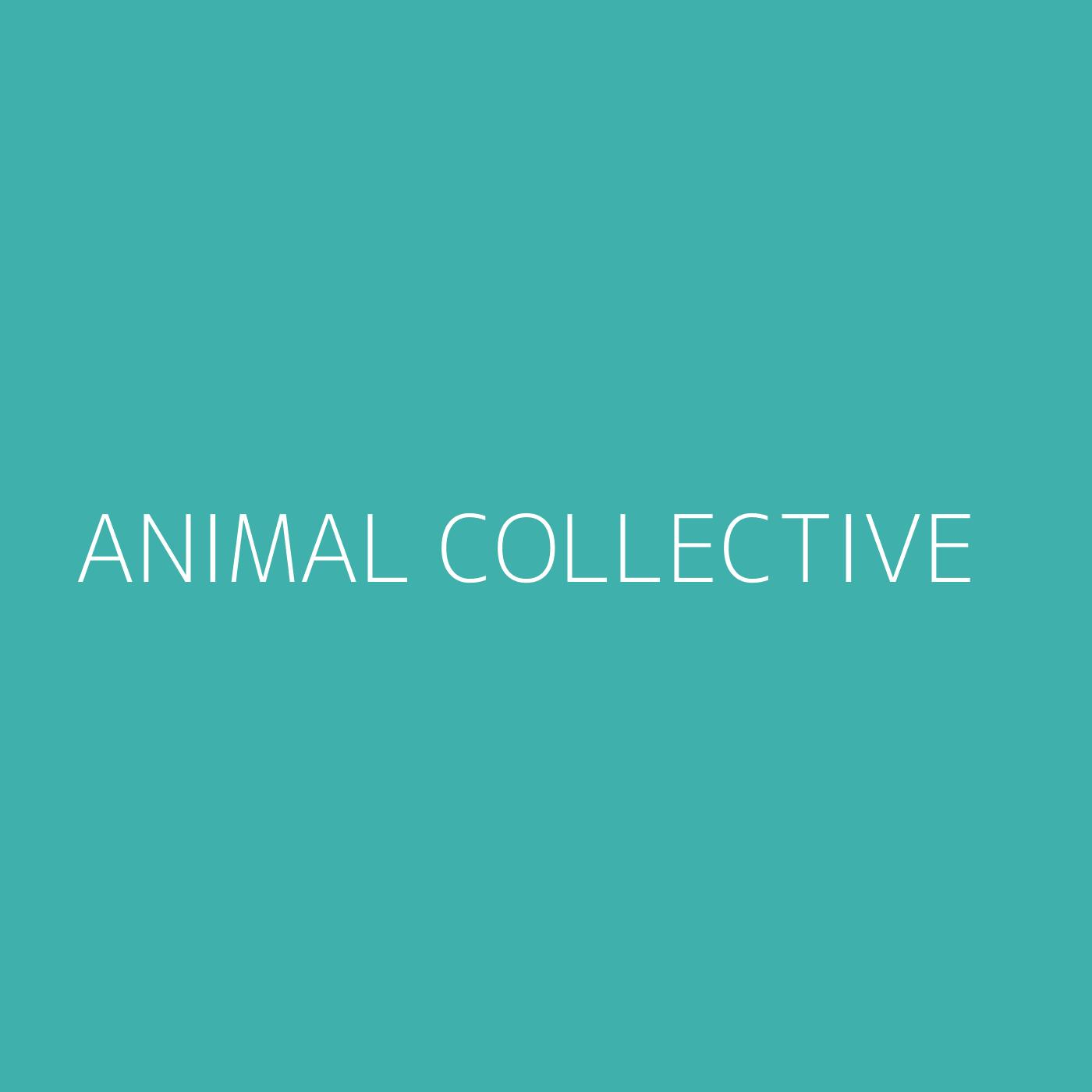 Animal Collective Playlist Artwork