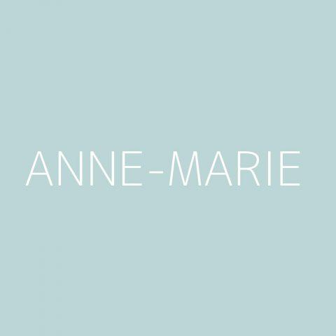 Anne-Marie Playlist – Most Popular