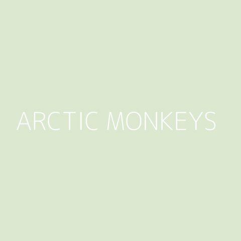 Arctic Monkeys Playlist – Most Popular