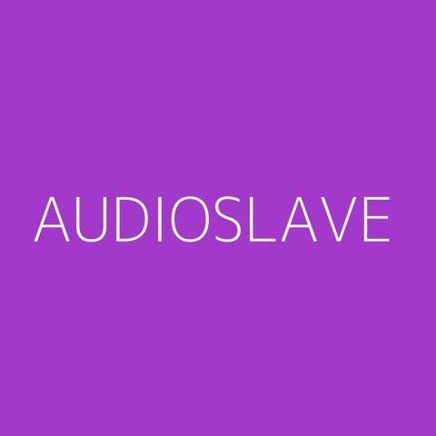 Audioslave Playlist – Most Popular