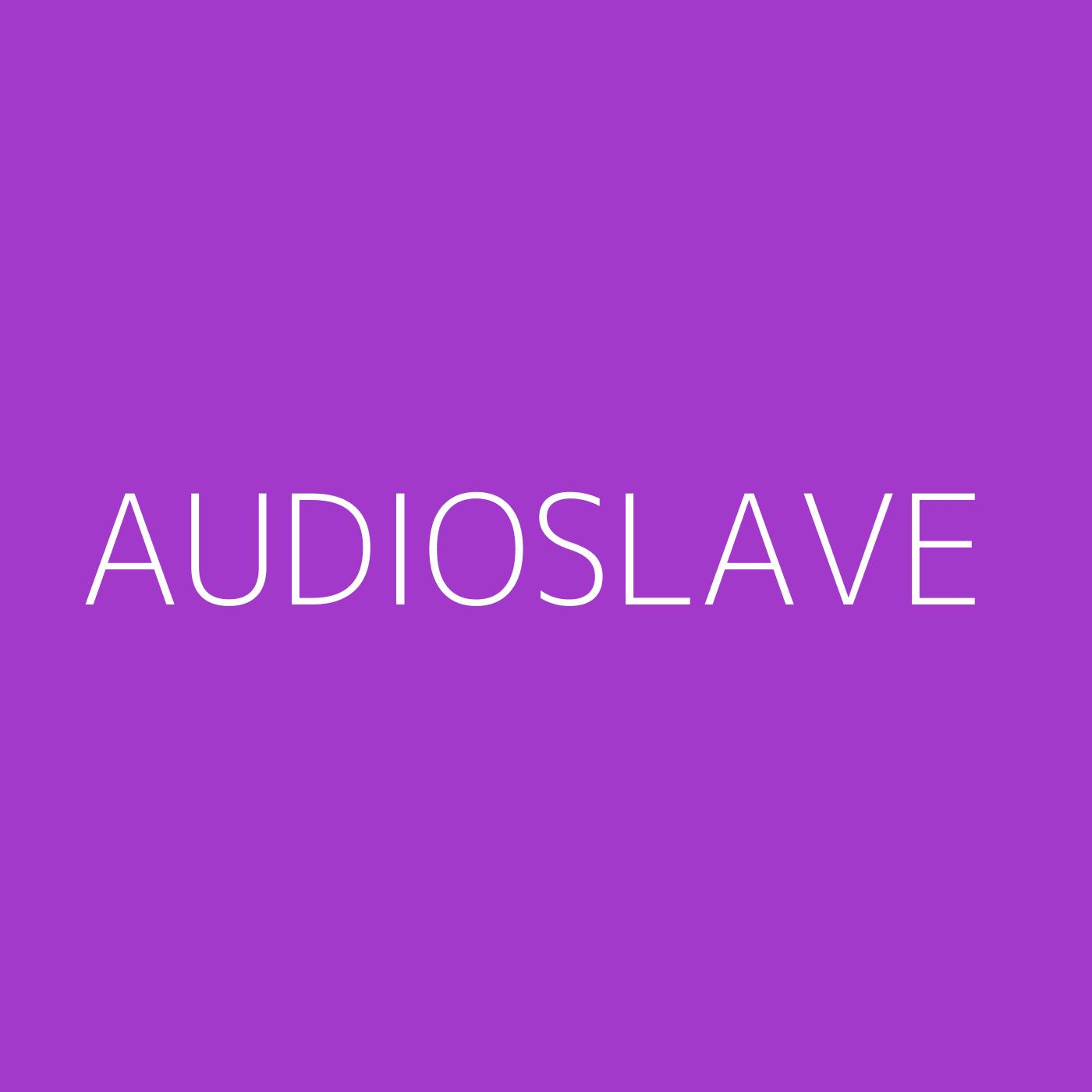 Audioslave Playlist Artwork