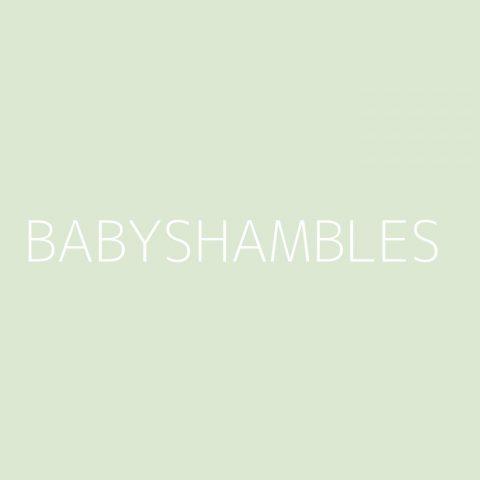 Babyshambles Playlist – Most Popular