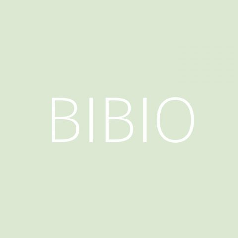Bibio Playlist – Most Popular