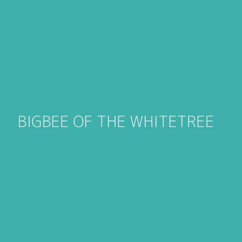 BigBee of the Whitetree Playlist – Most Popular