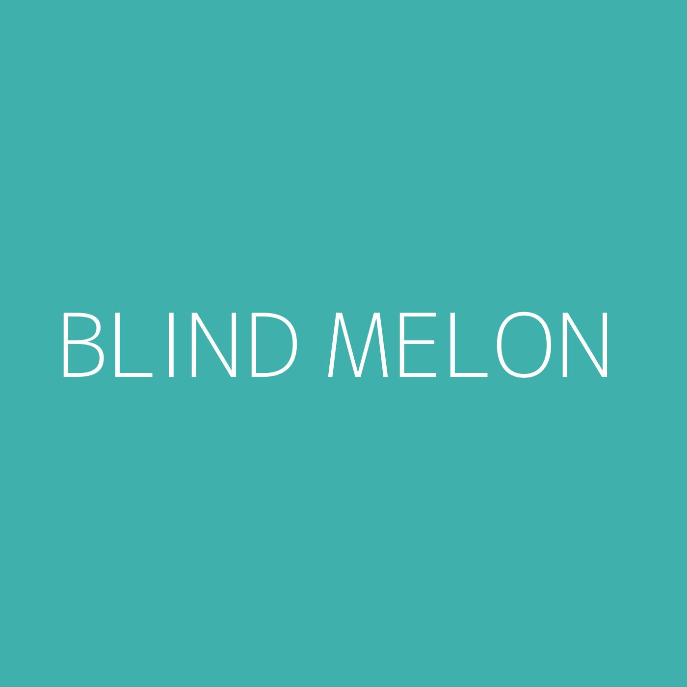 Blind Melon Playlist Artwork
