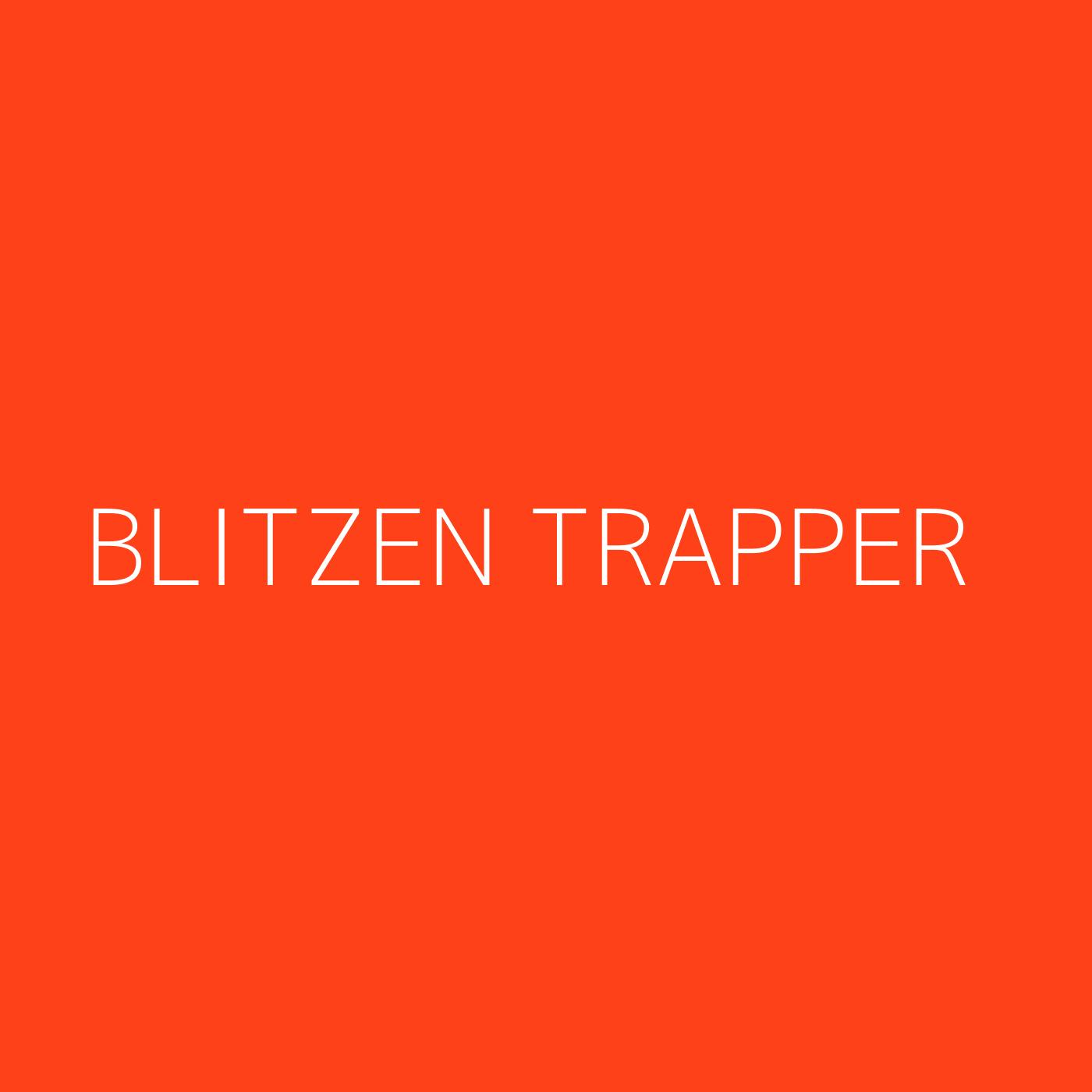Blitzen Trapper Playlist Artwork