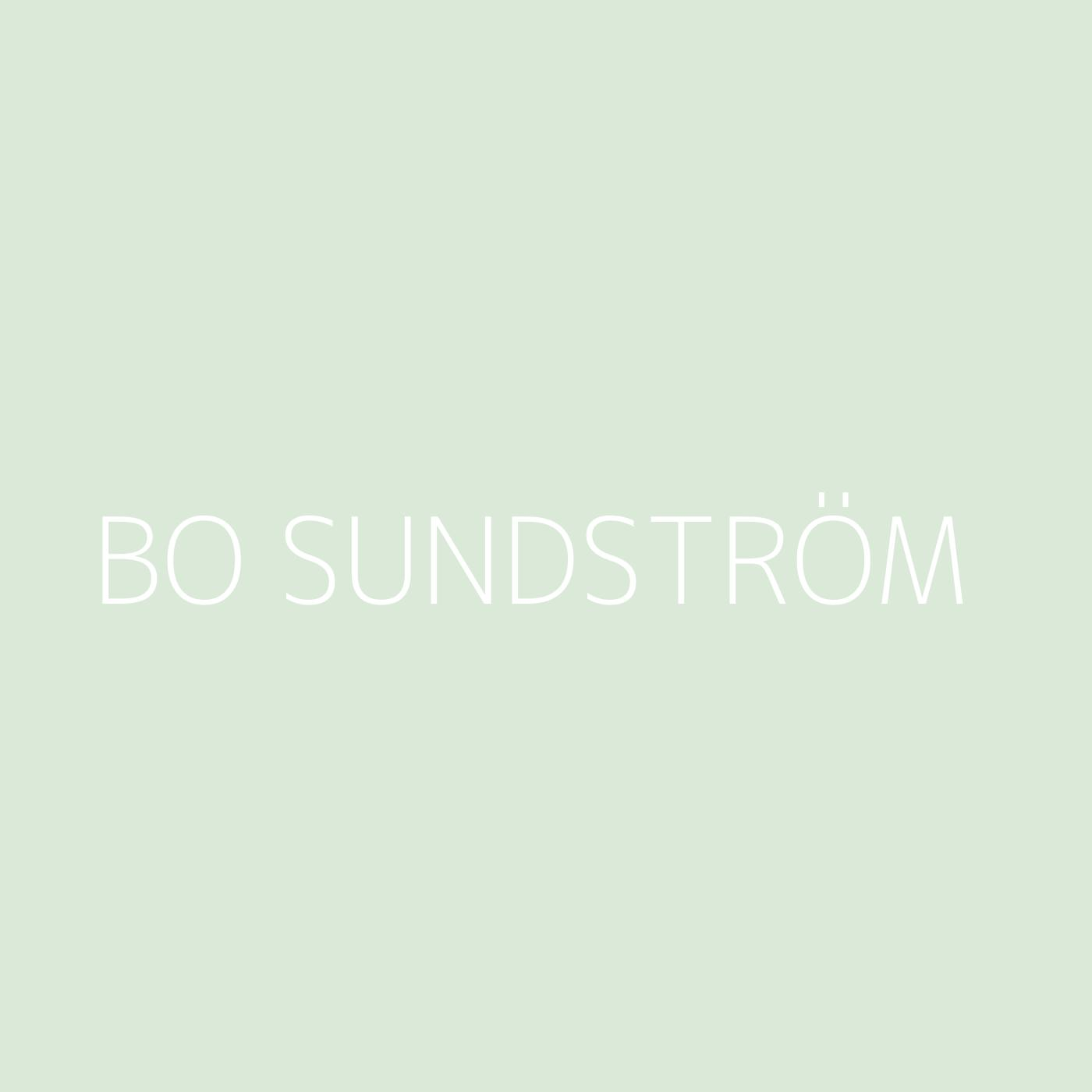 Bo Sundström Playlist Artwork