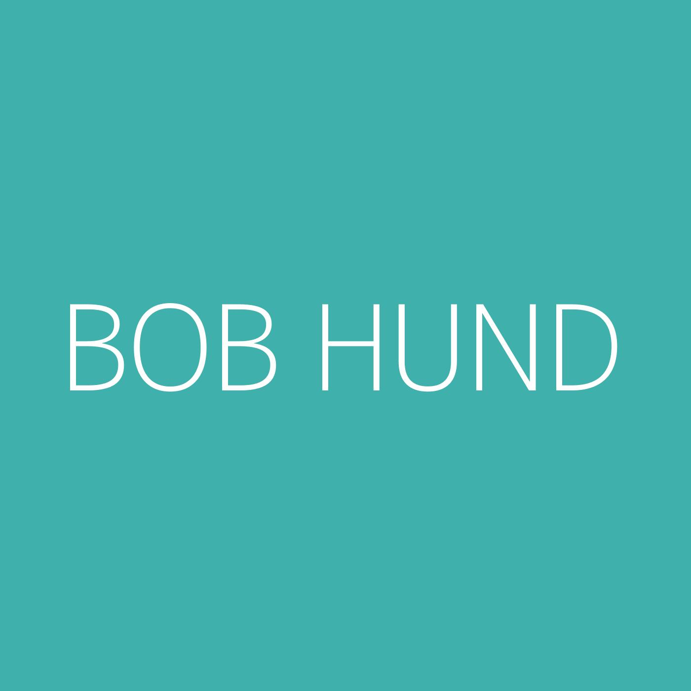 bob hund Playlist Artwork