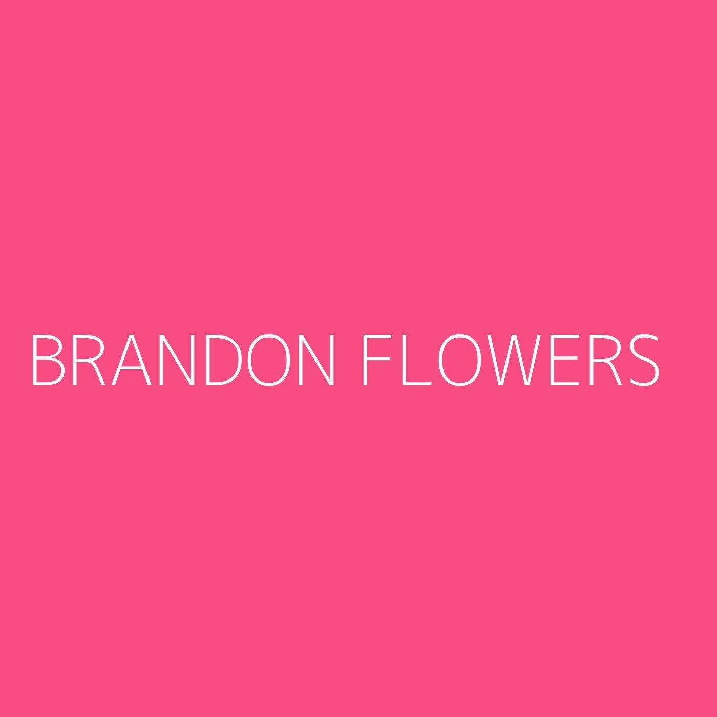 Brandon Flowers Playlist Artwork