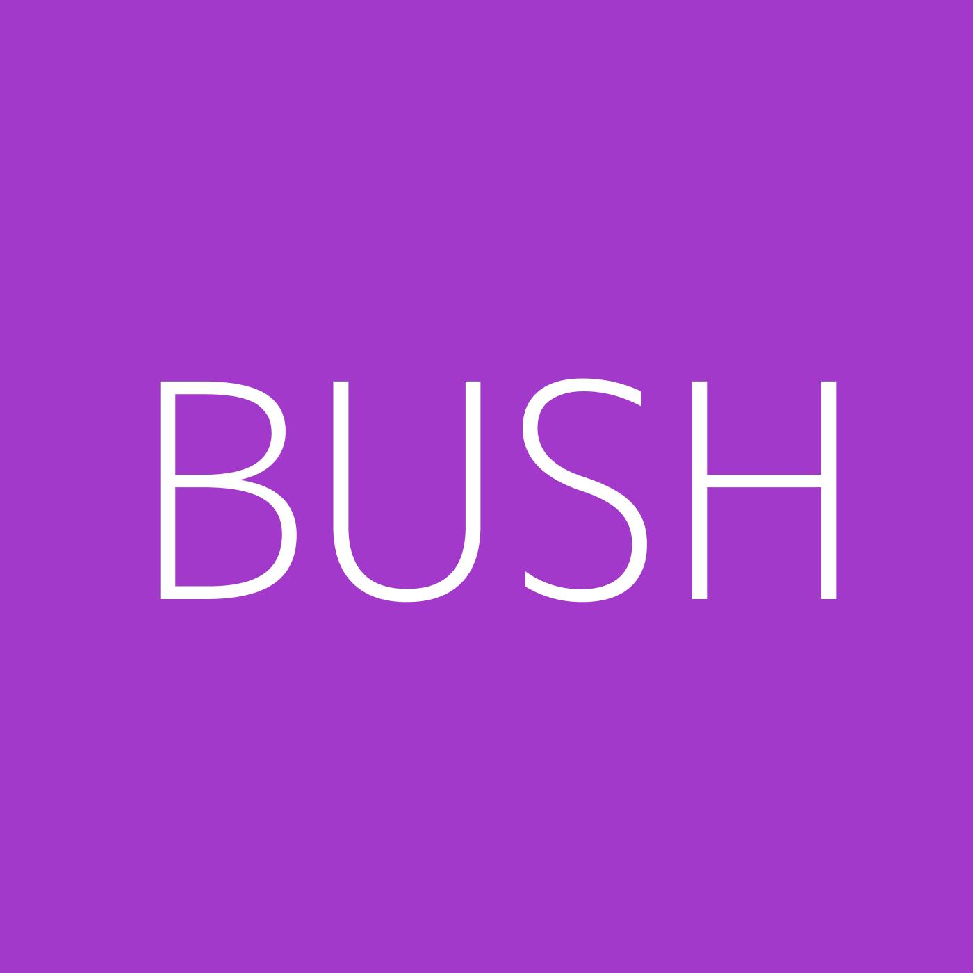 Bush Playlist Artwork