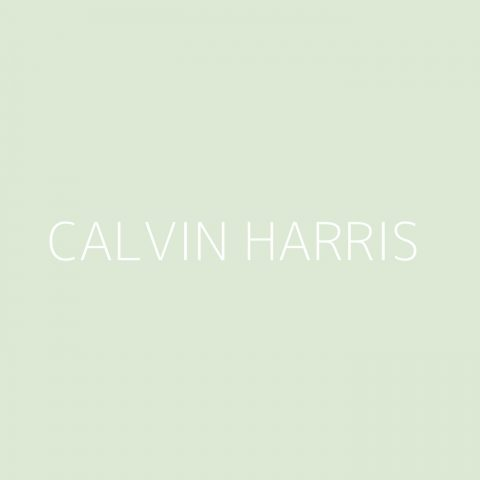 Calvin Harris Playlist – Most Popular