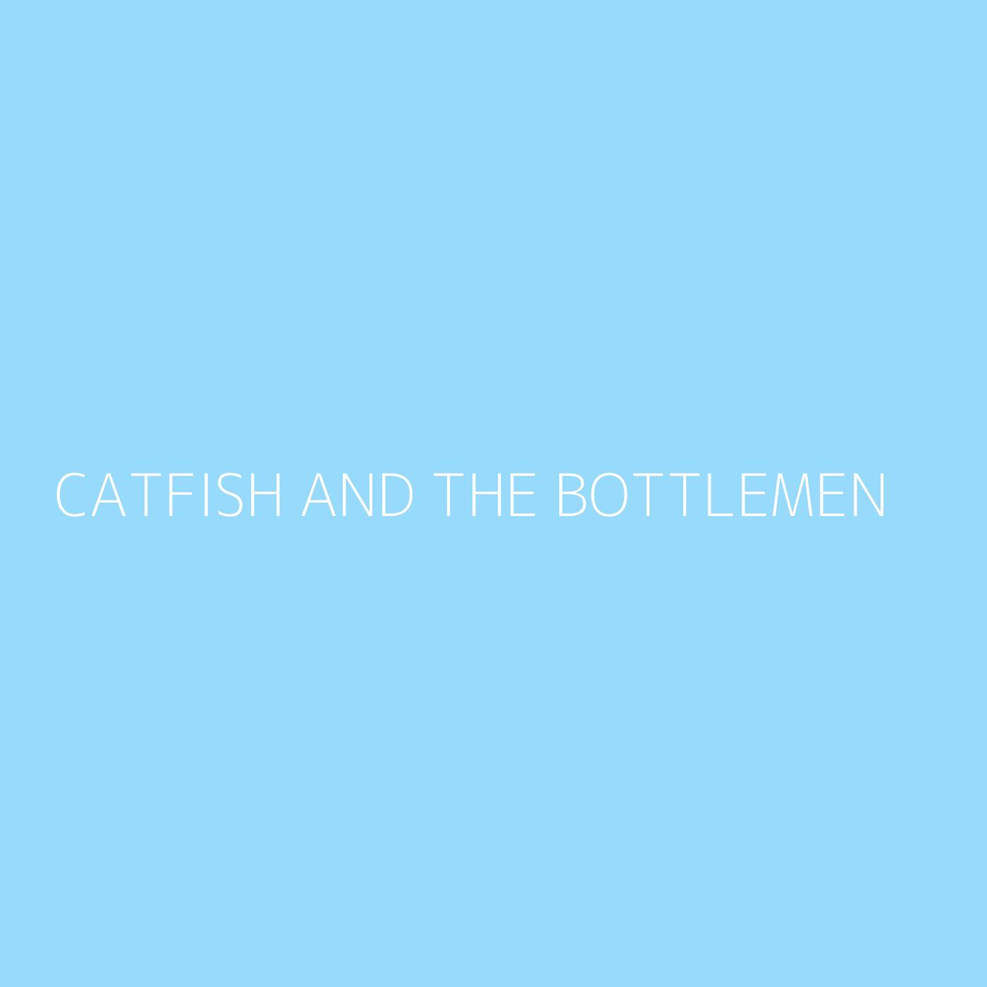 Catfish and the Bottlemen Playlist Artwork