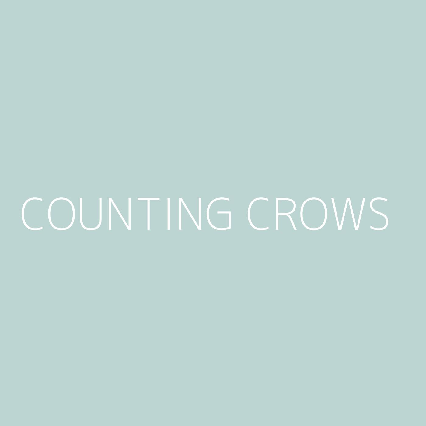 Counting Crows Playlist Artwork