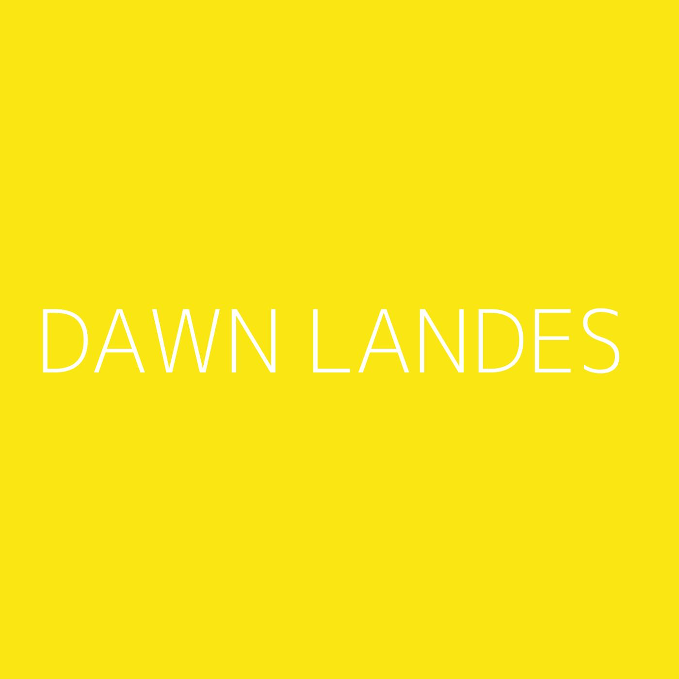 Dawn Landes Playlist Artwork