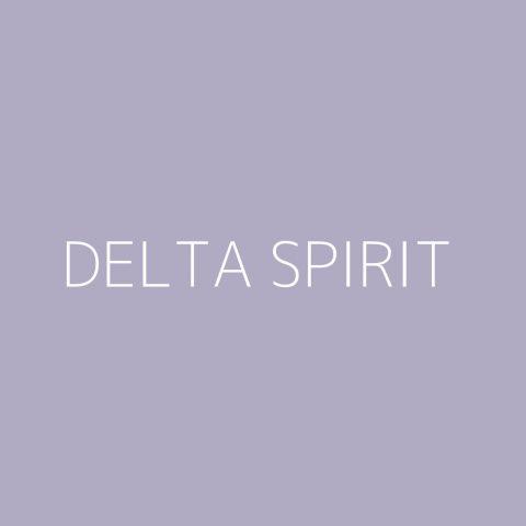 Delta Spirit Playlist – Most Popular