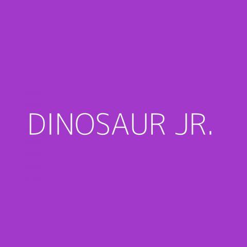 Dinosaur Jr. Playlist – Most Popular