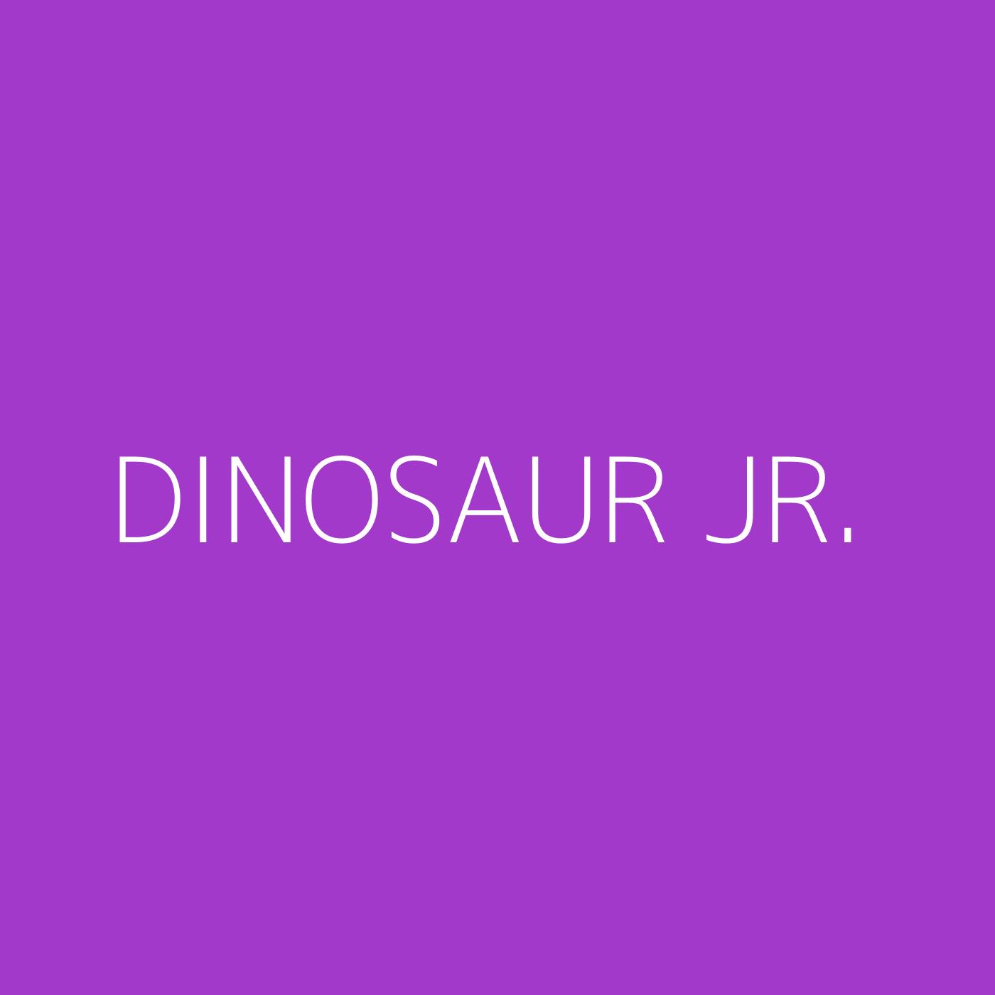 Dinosaur Jr. Playlist Artwork