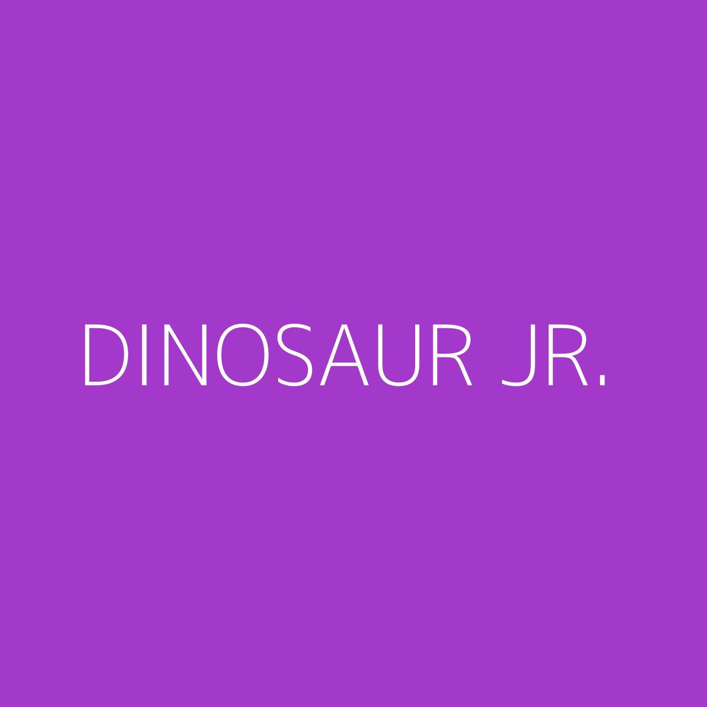 Dinosaur Jr. Playlist Artwork