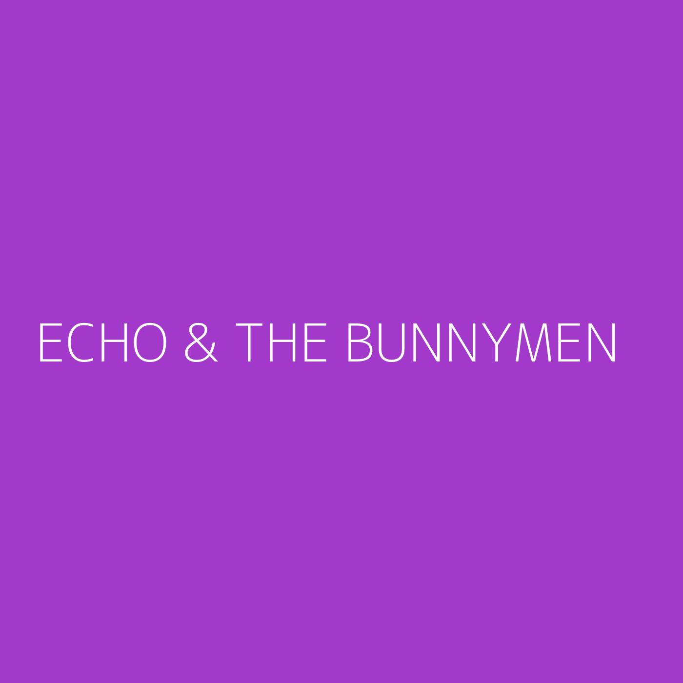Echo & the Bunnymen Playlist Artwork