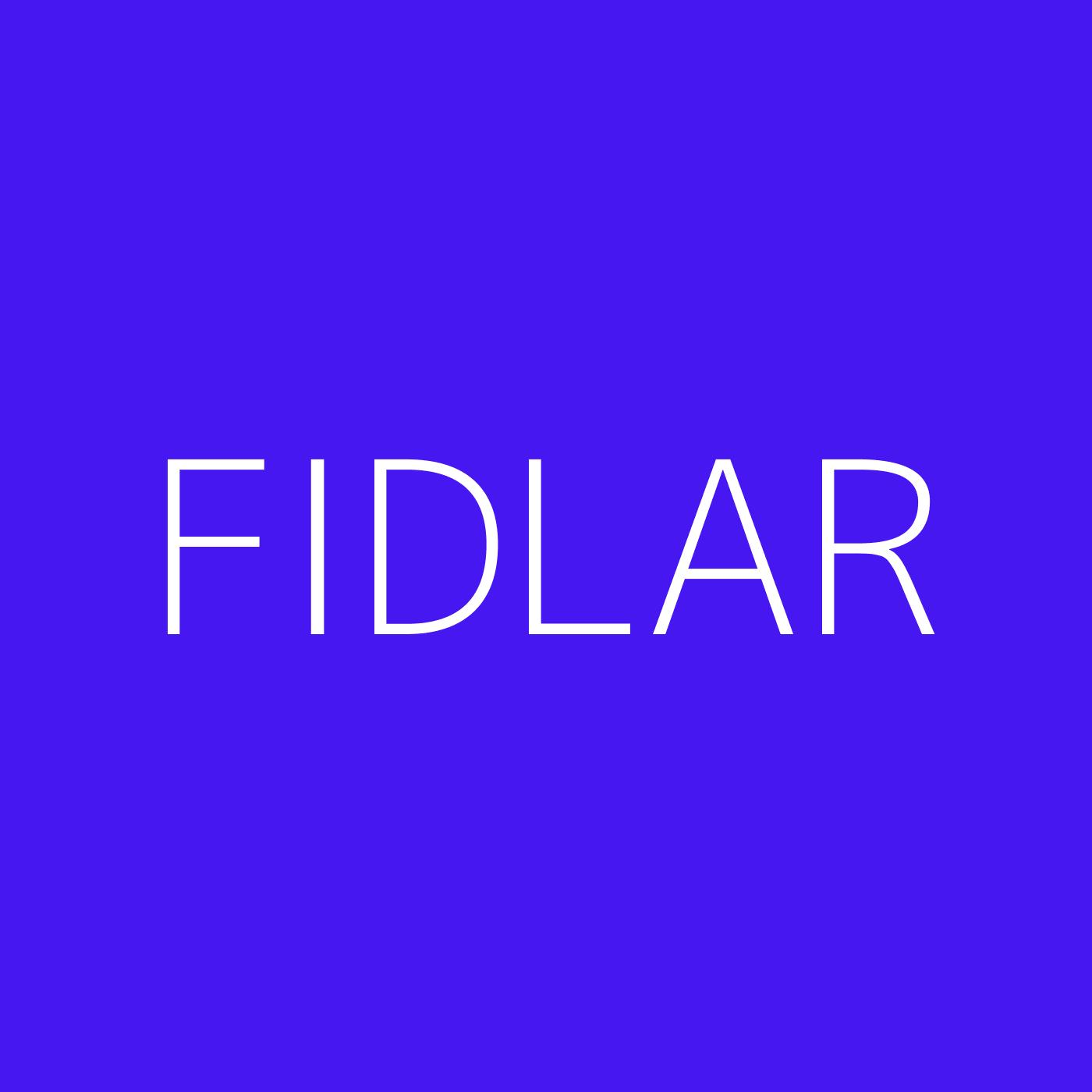 FIDLAR Playlist Artwork