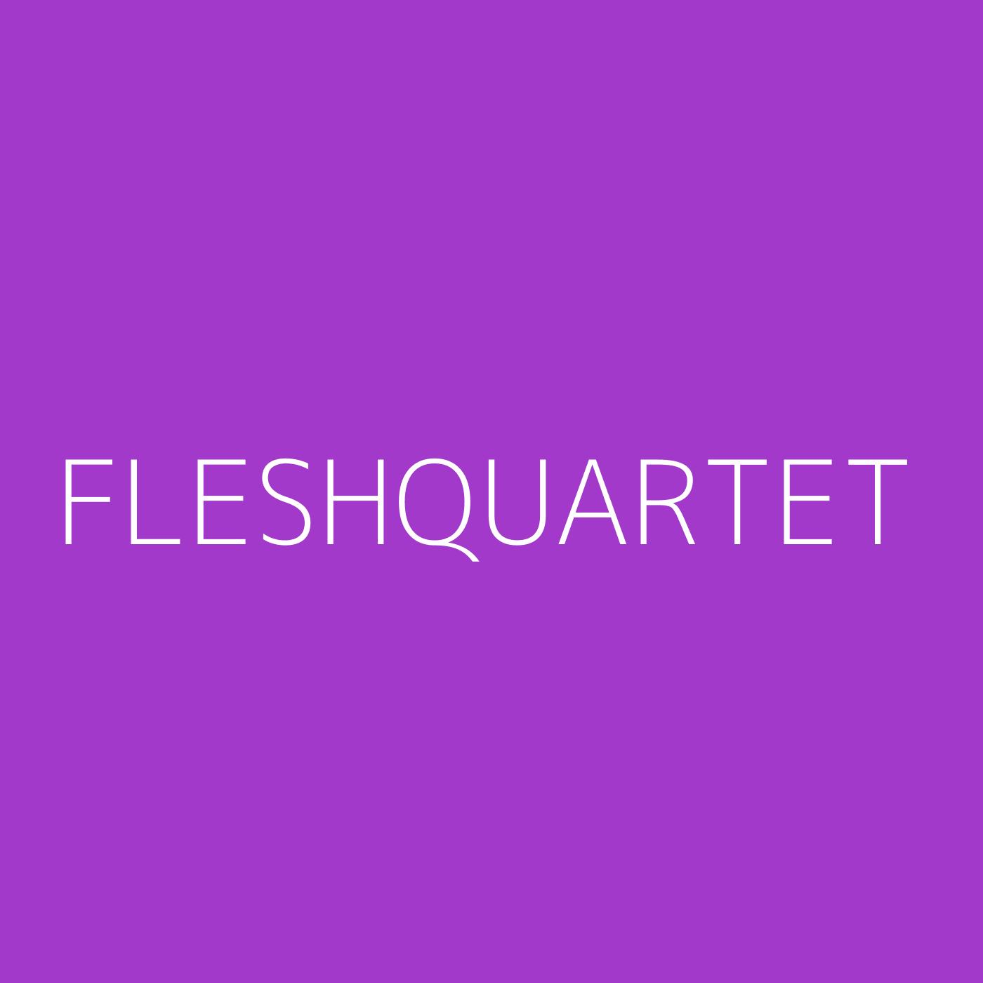 Fleshquartet Playlist Artwork