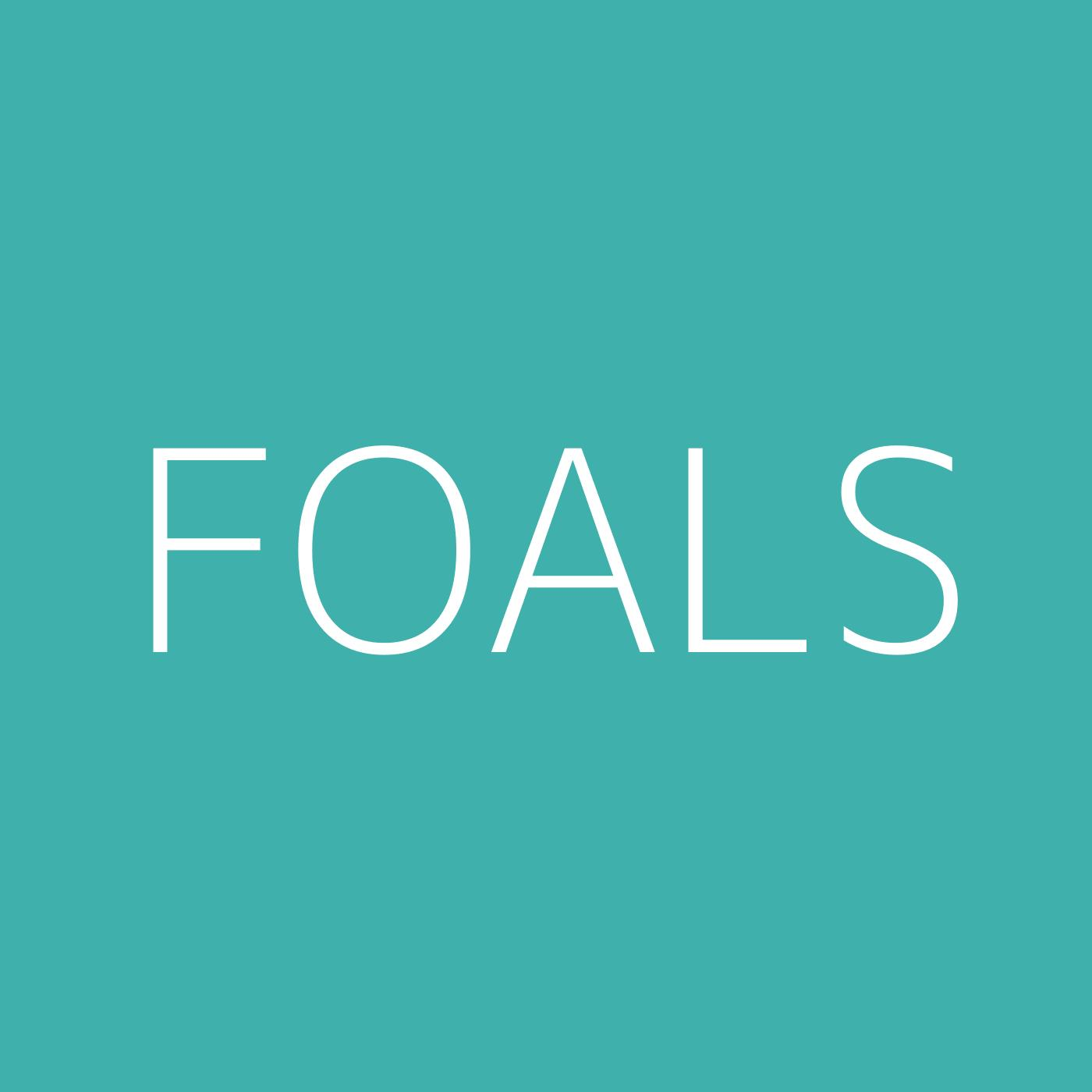 Foals Playlist Artwork