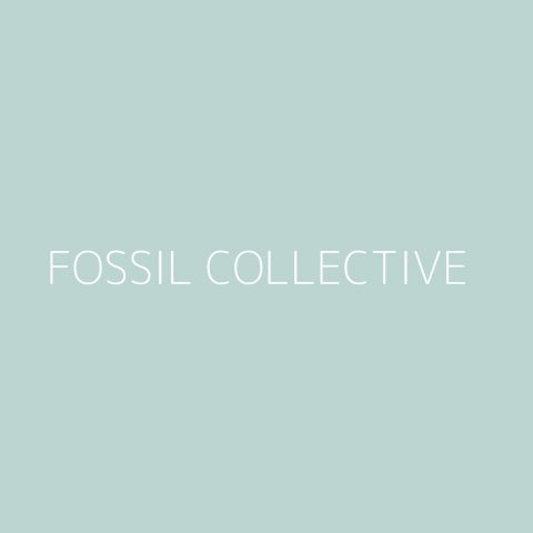 Fossil Collective Playlist – Most Popular