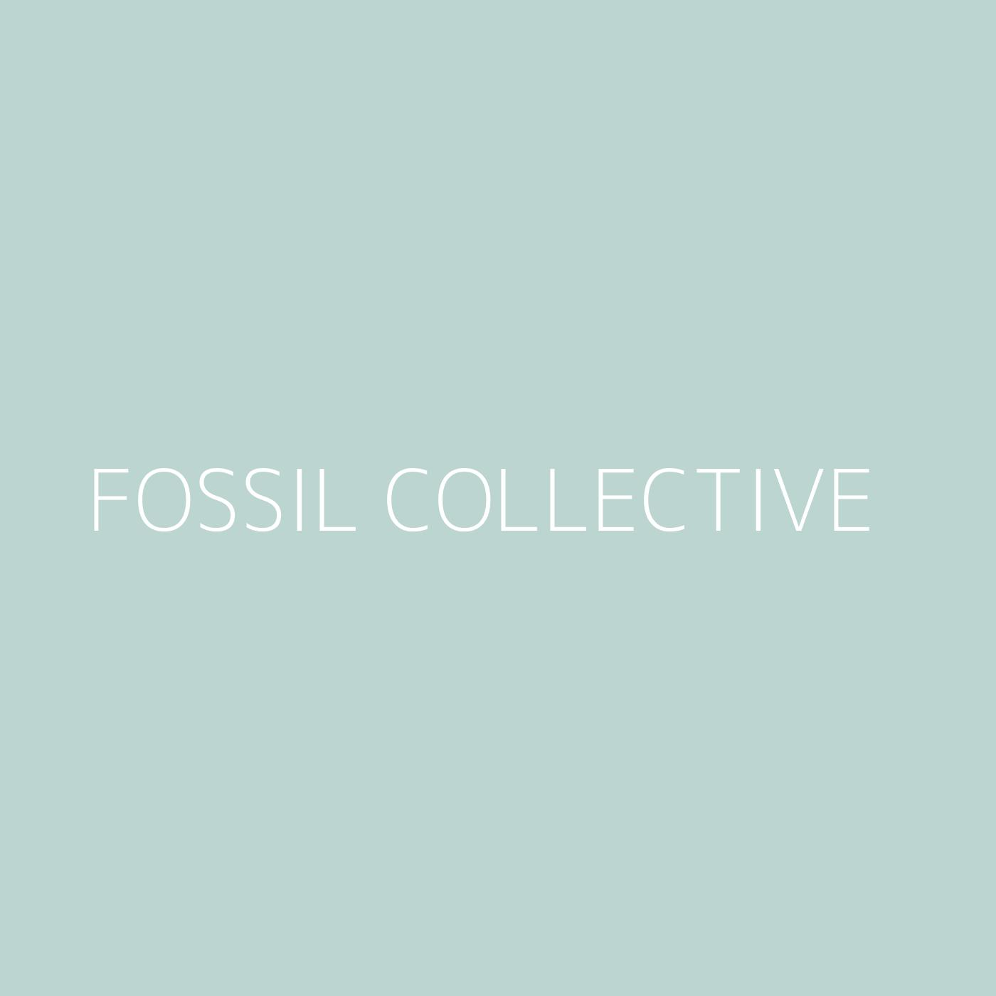 Fossil Collective Playlist Artwork