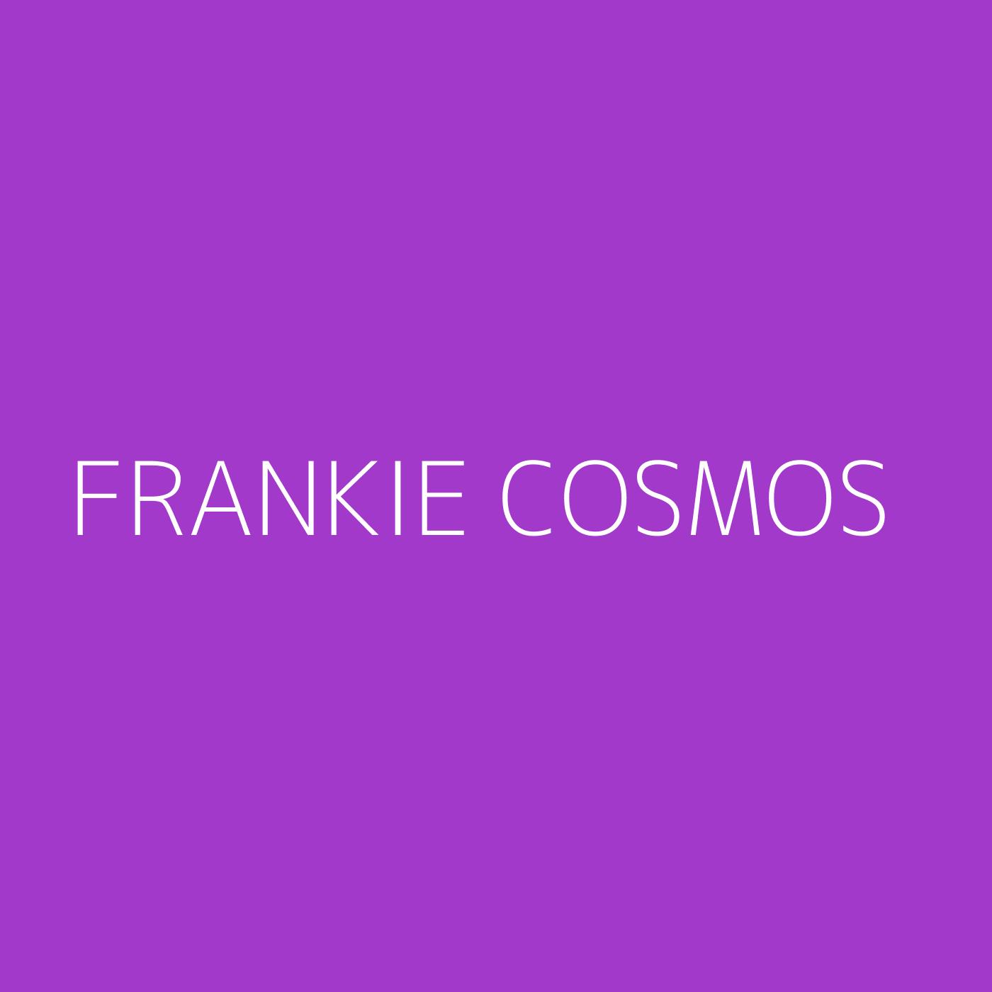 Frankie Cosmos Playlist Artwork