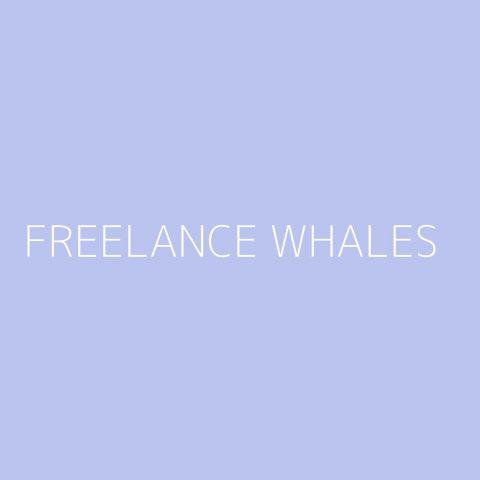 Freelance Whales Playlist – Most Popular