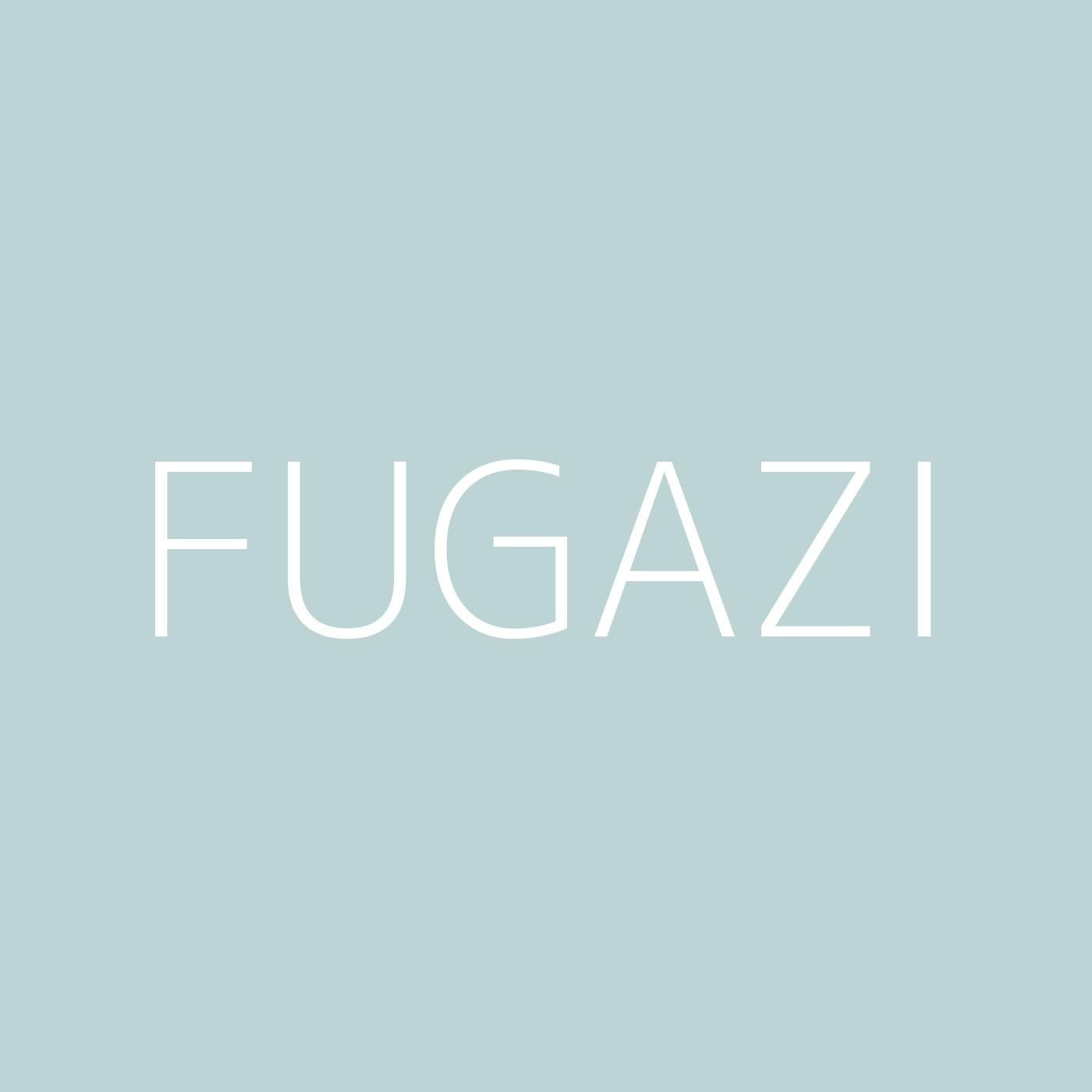 Fugazi Playlist Artwork