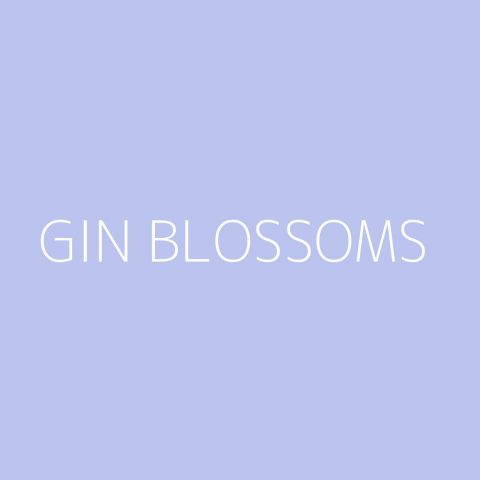 Gin Blossoms Playlist – Most Popular