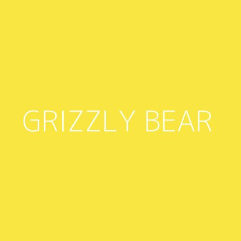 Grizzly Bear Playlist – Most Popular