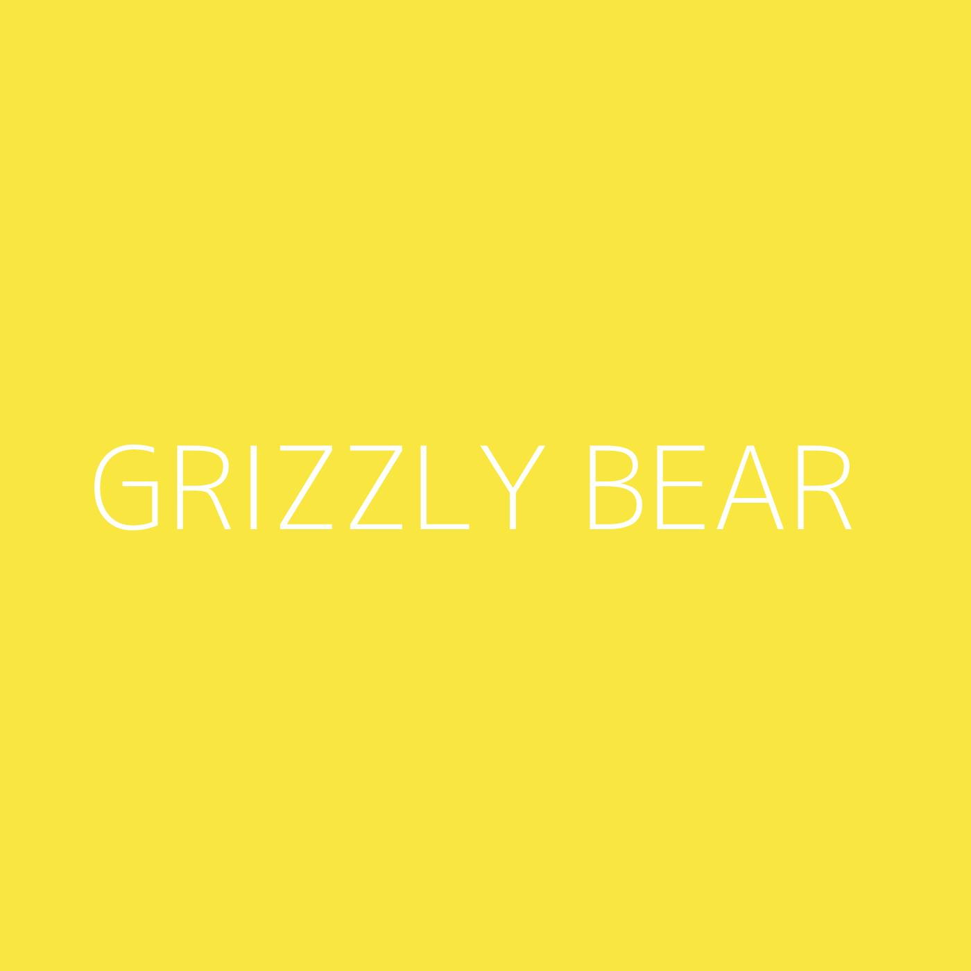 Grizzly Bear Playlist Artwork