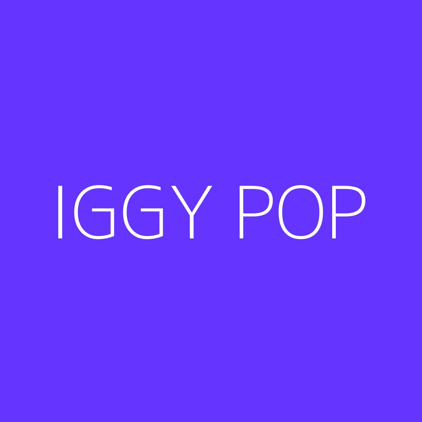 Iggy Pop Playlist Artwork