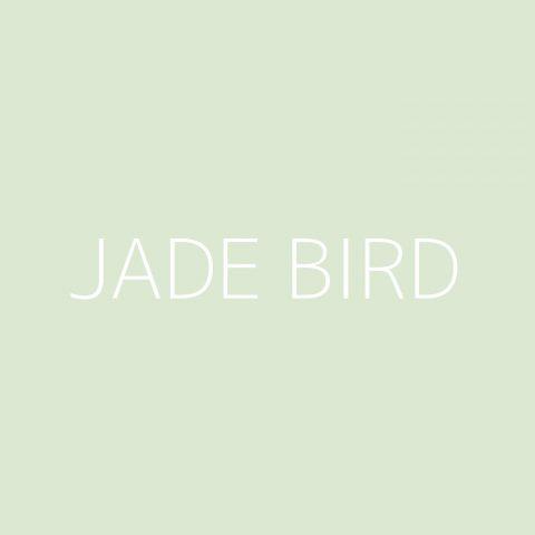Jade Bird Playlist – Most Popular