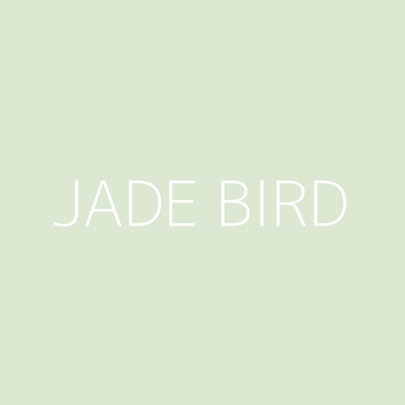 Jade Bird Playlist Artwork