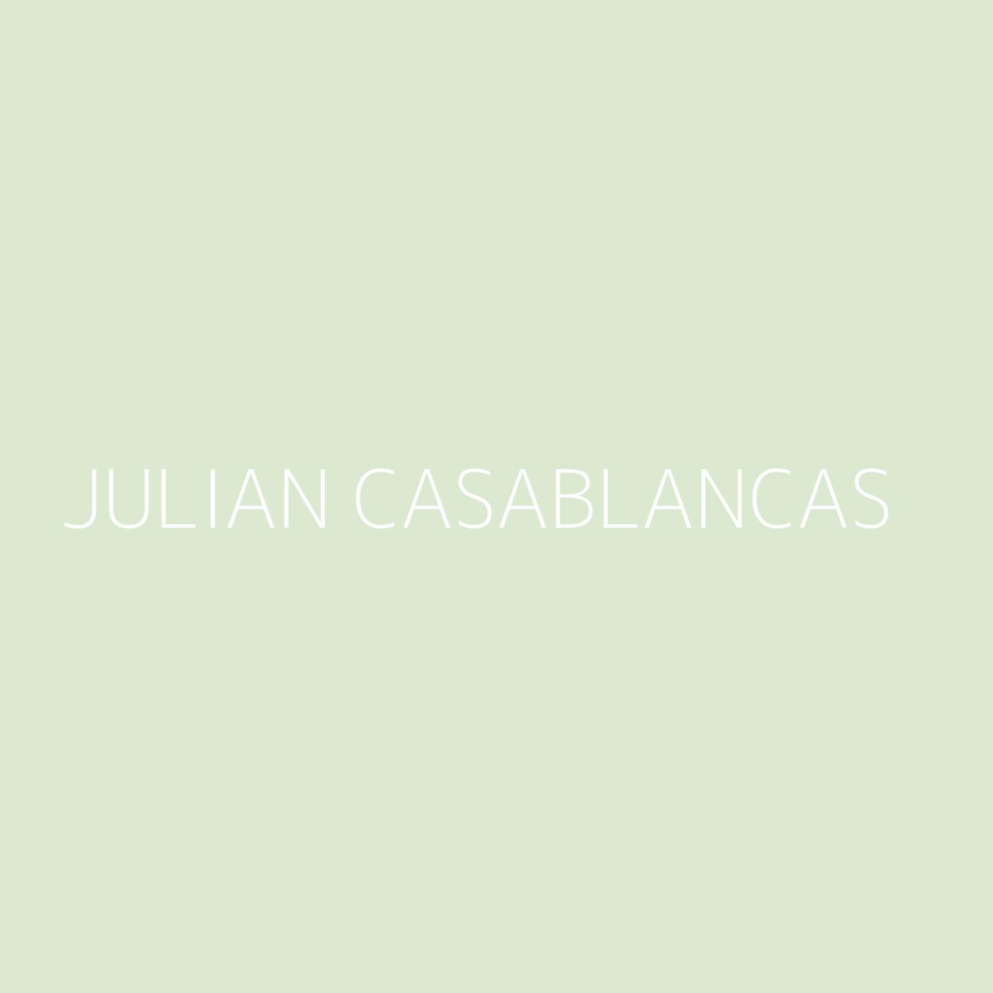 Julian Casablancas Playlist Artwork