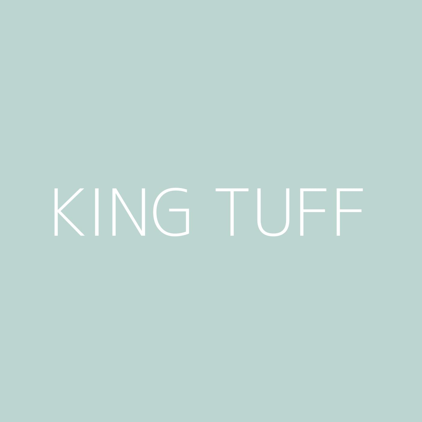 King Tuff Playlist Artwork