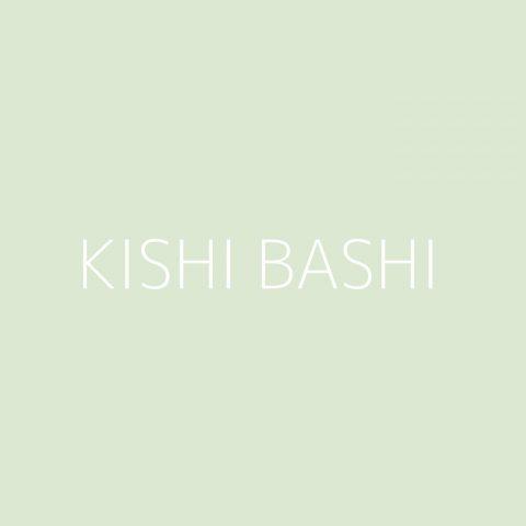 Kishi Bashi Playlist – Most Popular