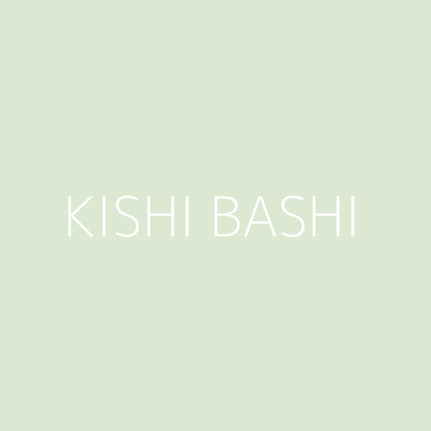 Kishi Bashi Playlist Artwork
