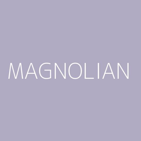 Magnolian Playlist – Most Popular